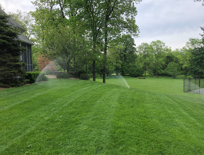 Lush Green Lawn with Sprinklers